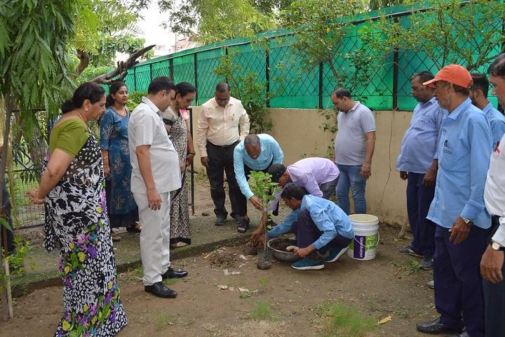 Jiva Public School-Others plantation