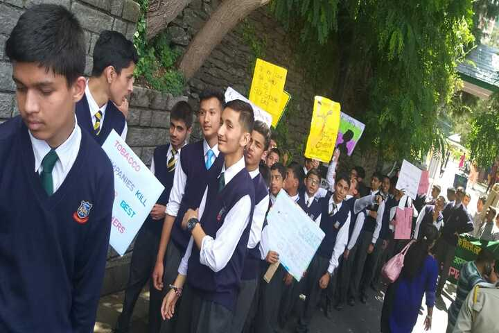 Shimla Public School-Rally On Tobacoo Day
