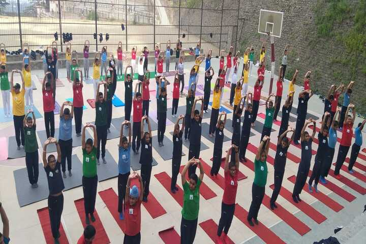 Shimla Public School-Yoga Day