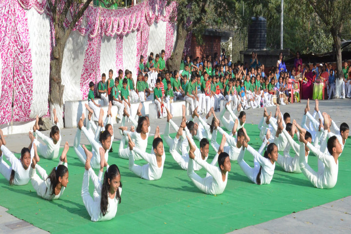 Trinity School-Yoga