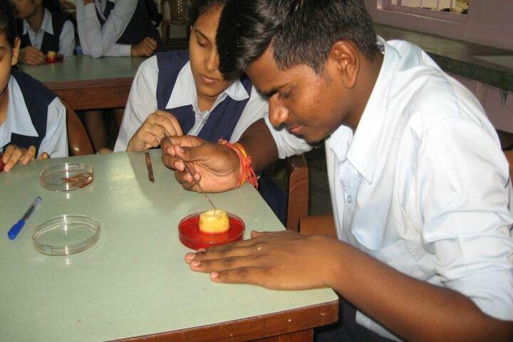 Gulmohur High School-Biology Lab