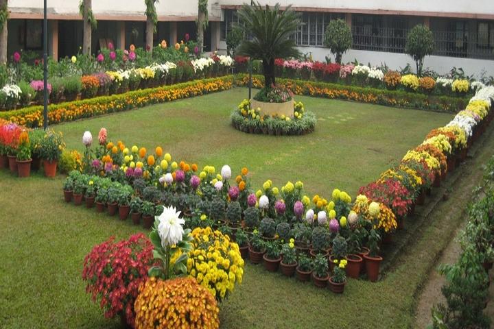 Gulmohur High School-Garden
