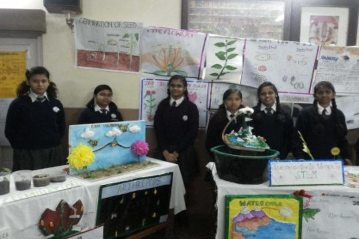 D B M S English School-Exhibition