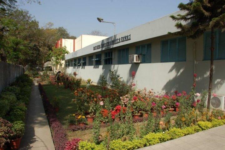 D B M S English School-Garden