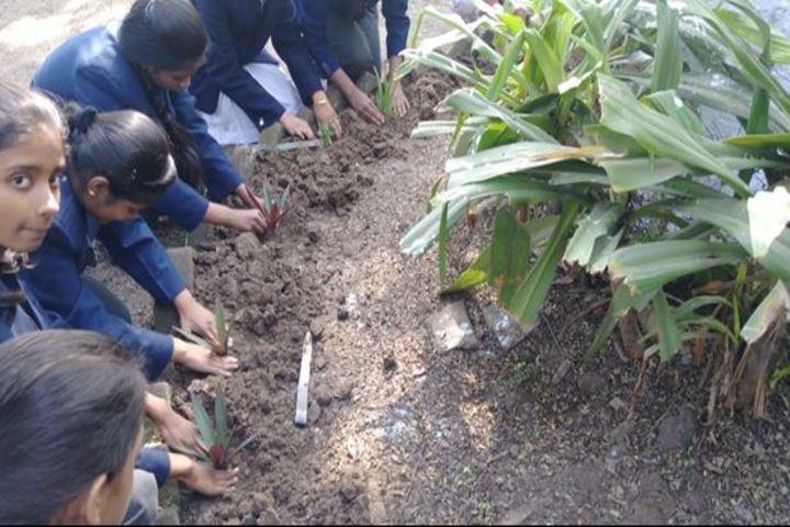Motilal Nehru Public School-Plantation Activity