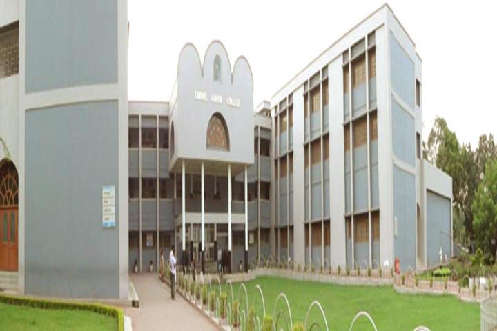 Carmel Junior College-Campus