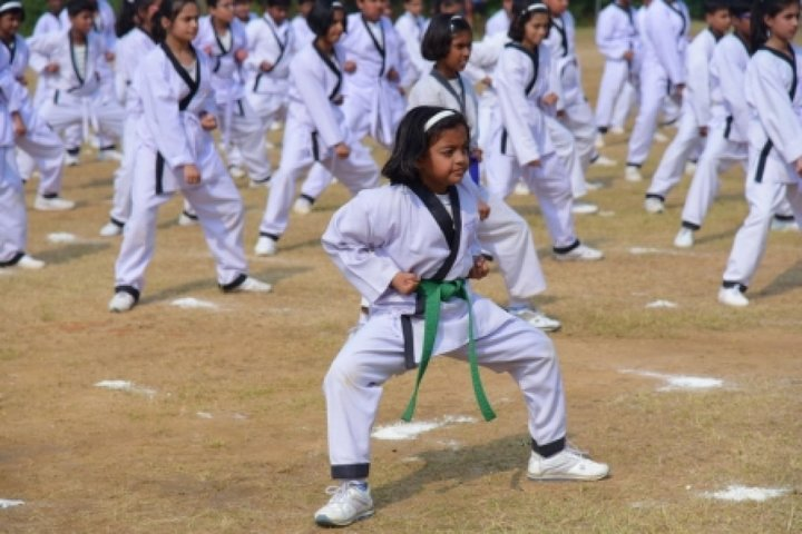 Carmel Junior College-Martial Arts