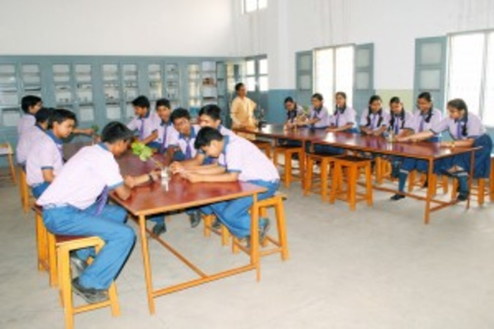 St Anns School-Library