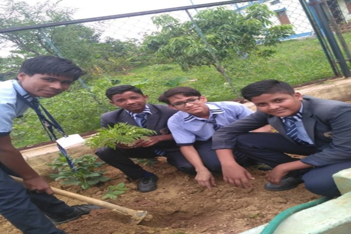 St Maria School-Tree Planting