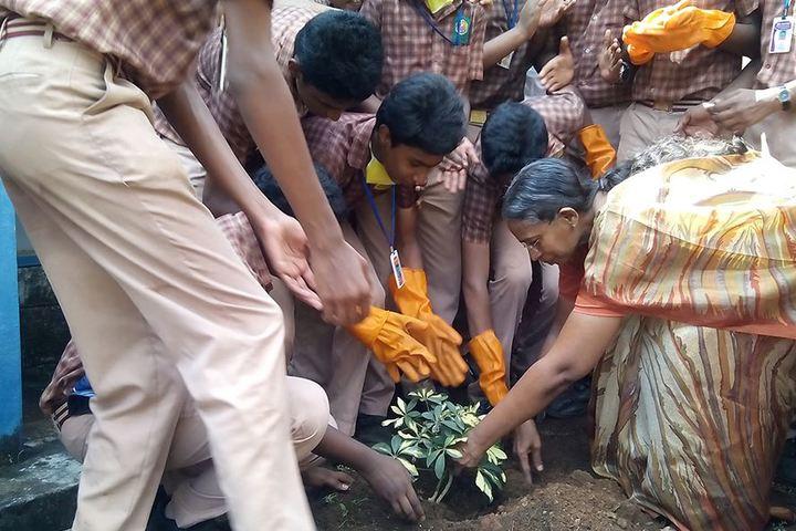 Amrita Vidyalayam-Tree Plantation