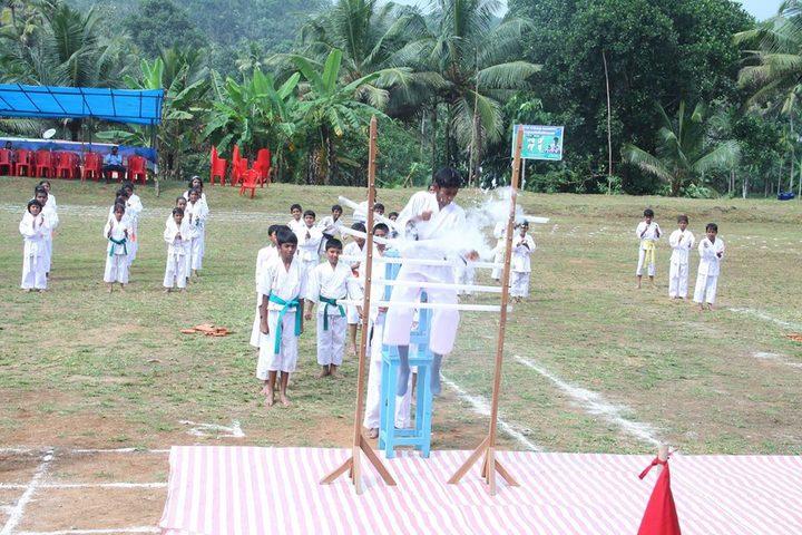 Vidya Vikas School-Karate Activity