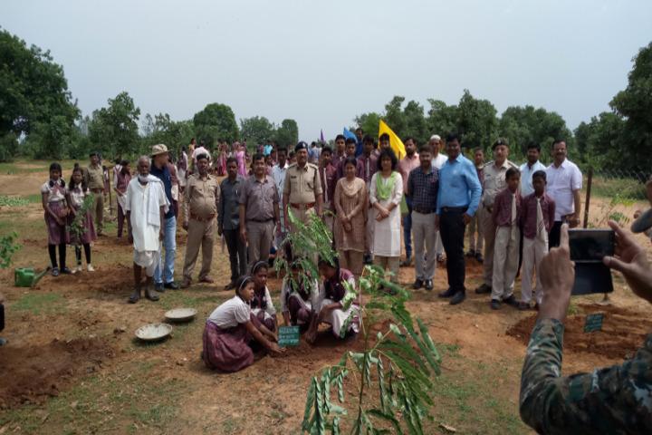 DAV Mukhyamantri Public School-Plantation