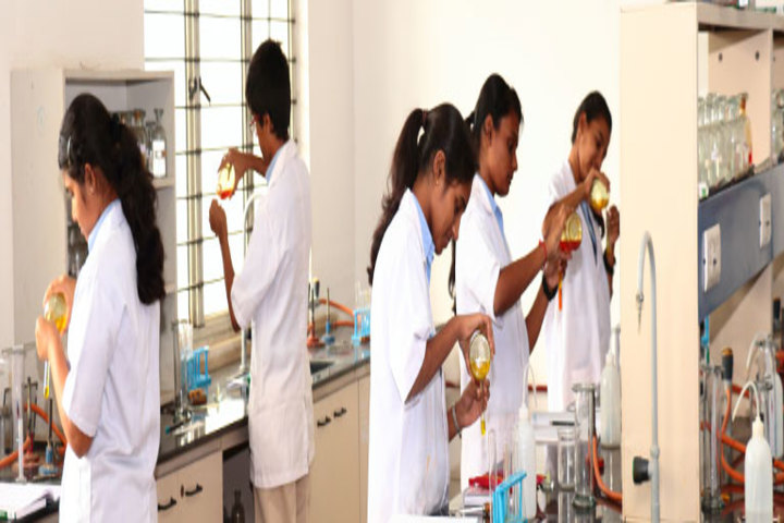 St Pauls English School-Chemistry Lab