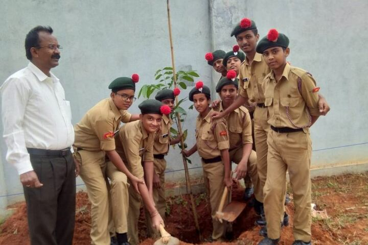Holy Angels High School - Tree Plantation