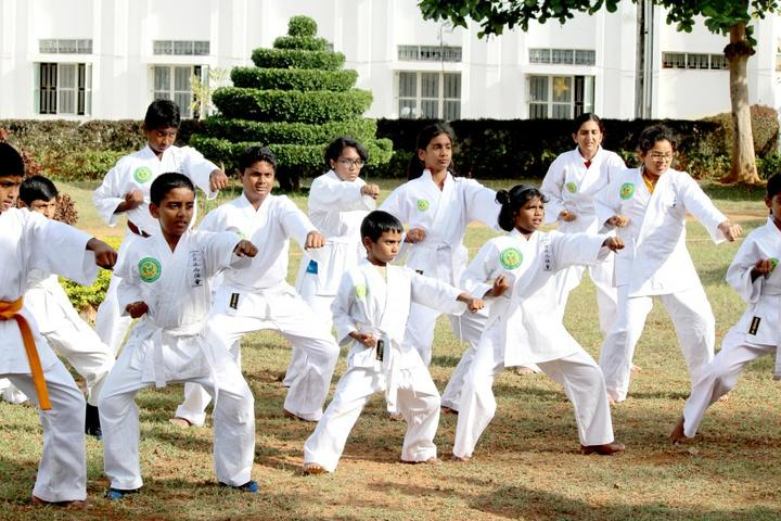 De Paul International Residential School-Karate