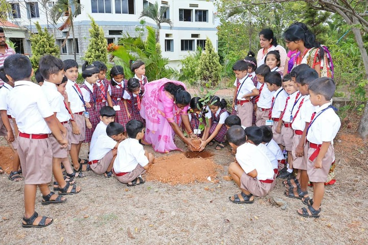 Silas International School-Tree Plantation