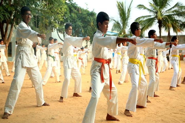 New Baldwin International School-Martial Arts