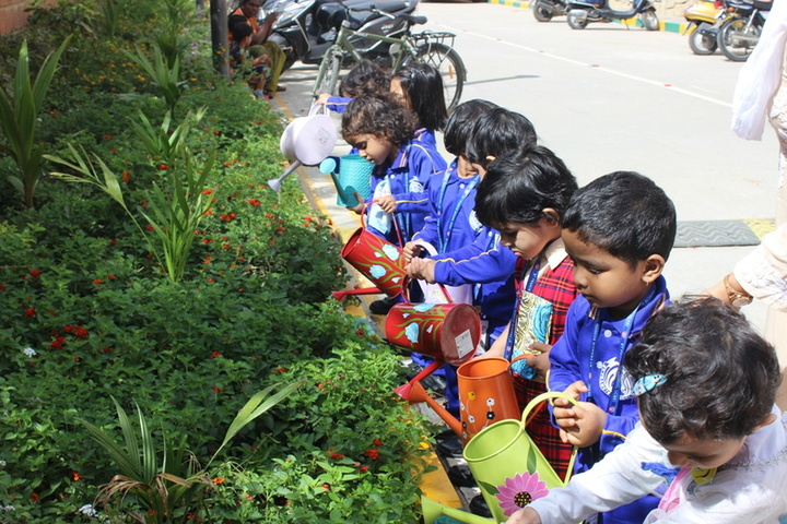 St Francis School-Environment Day