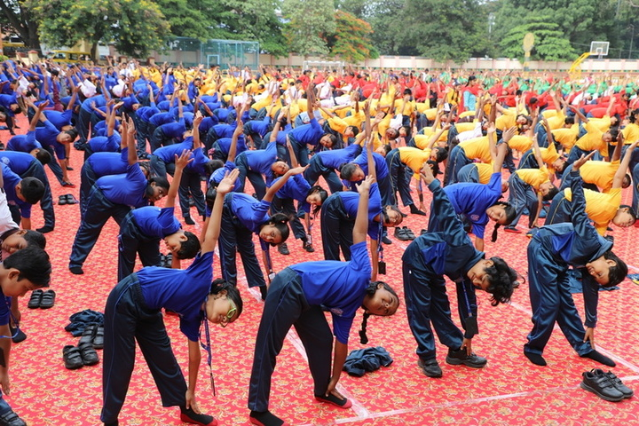 St Francis School-Exercise