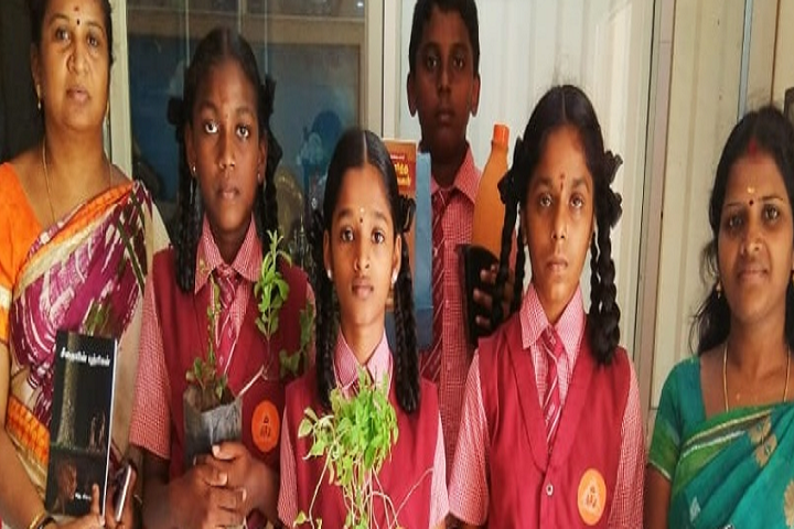 St James Matriculation Higher Secondary School-Plantation