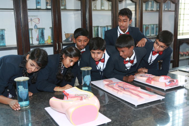 Nightingales English School Bengaluru-Biology Lab