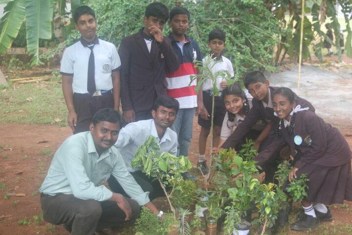 Aditya Public School-Tree Plantation