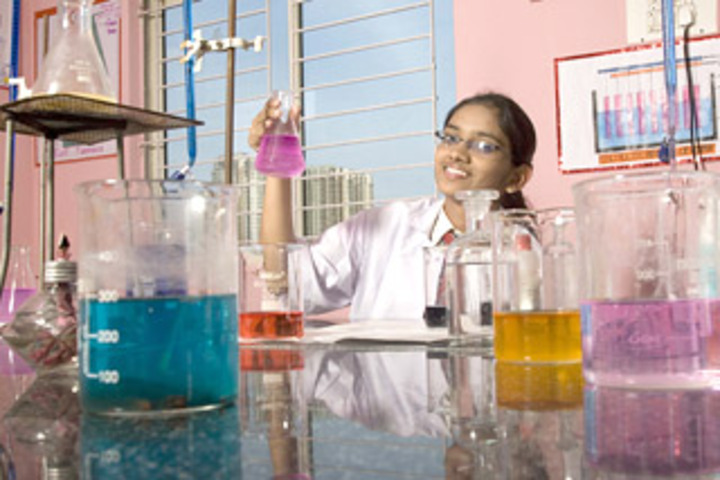 New Indus Valley Residential School-Chemistry Lab