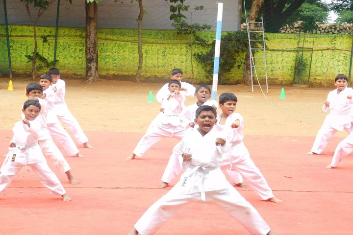Federal Public School-Karate Classes