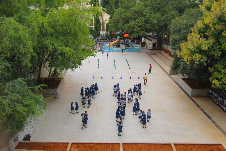 N E T Public School-Play Ground
