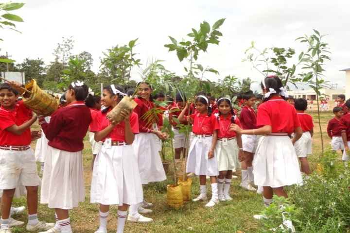 Infant Jesus School-Environment Day