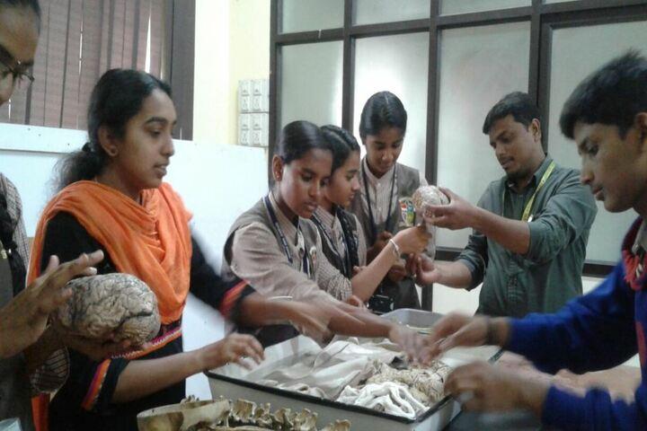 Citizens English School-Biology Lab