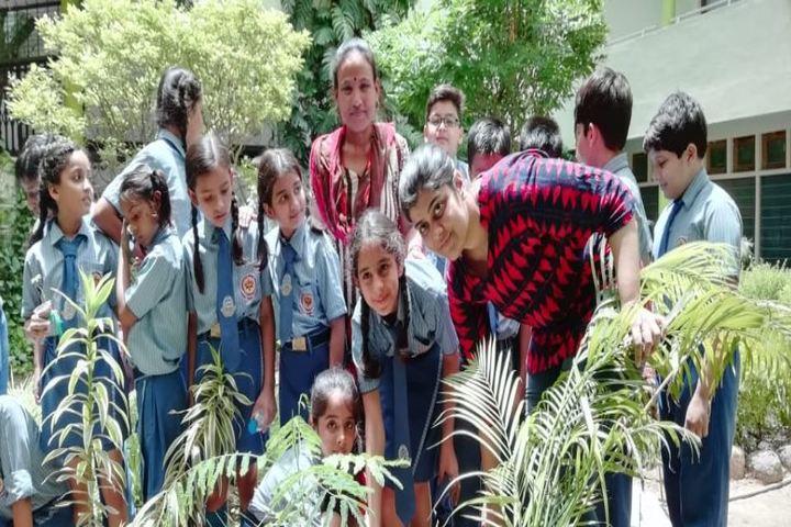 Wendy School Junior College-Tree Plantation