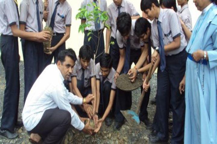 Nirmala Convent School-Plantation