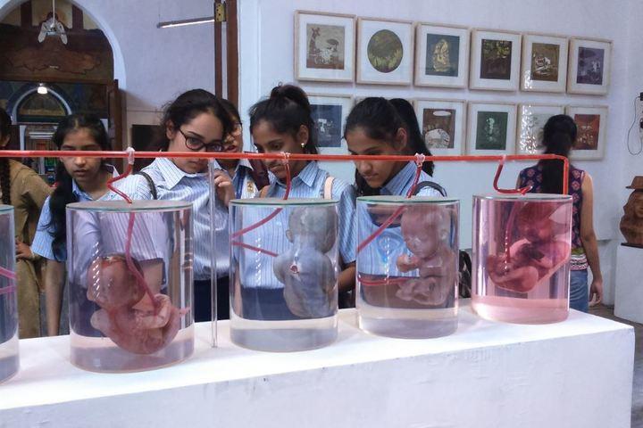 Jasudben M L School-Exhibition