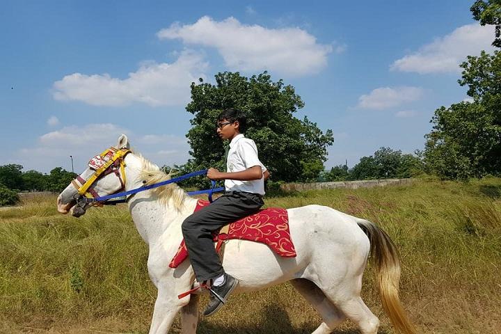 Delhi Public School-Horse Riding