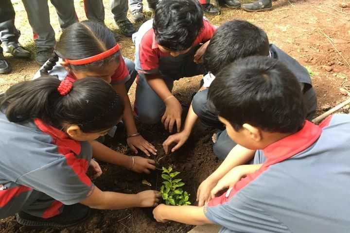 Omkar International School-Tree Plantation