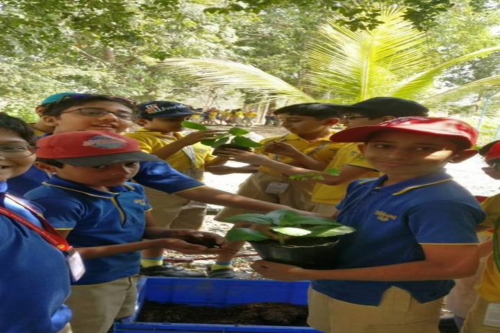 Billabong High International School-Field Trip