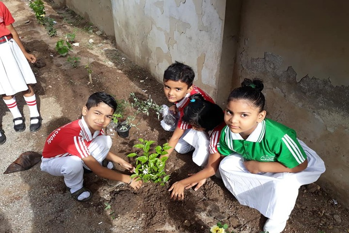 North Point School-Environment Day