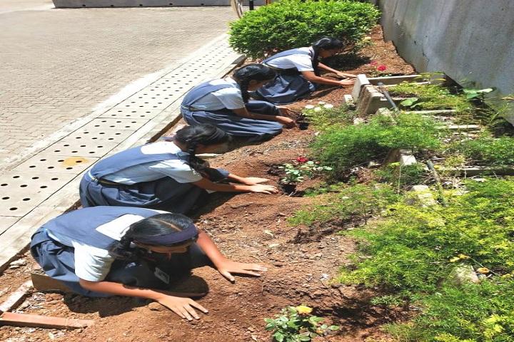 Vidya Pratishthans Nanded City Public School-Plantations