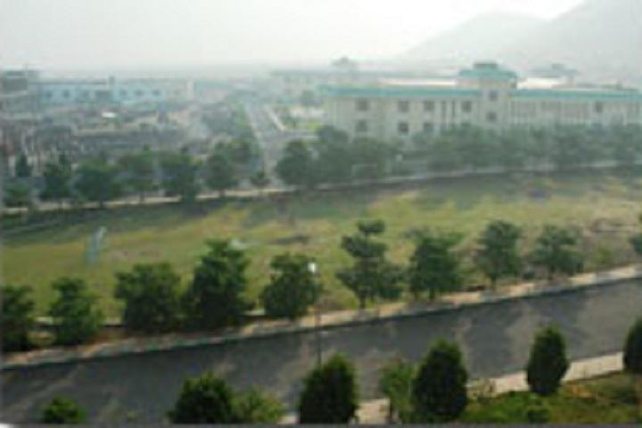 D Y Patil International School-School overview