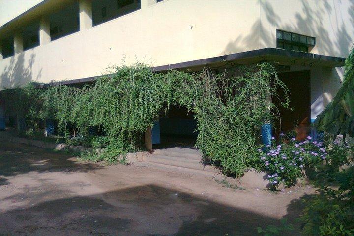 St Antonys School-Garden