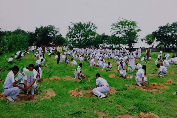 Vivekananda International School-Tree Planting