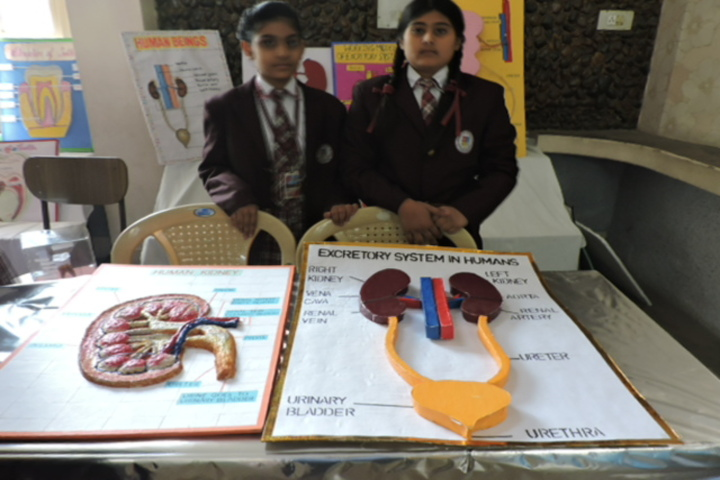 St Josephs Convent School-Science Exhibition