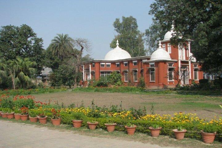 Alexandra School-Garden