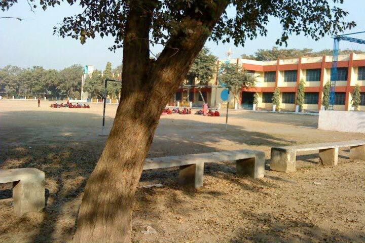 St Francis Convent School-Ground