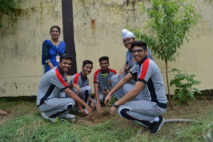 Holy Heart Presidency School-Tree Planting
