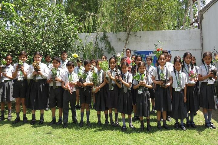 The Trinity School-Earth  Day