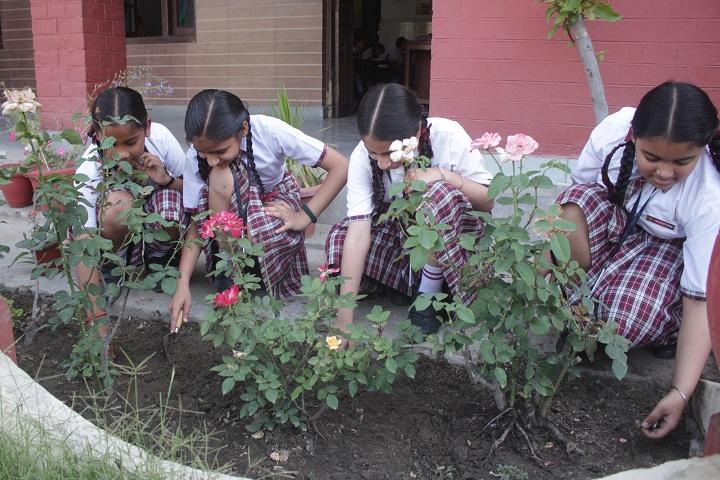 St Josephs Convent School-Cleaning Program