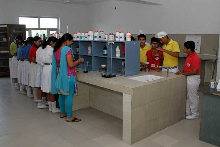 Sant Baba Hari Singh Model School-Chemistry Lab