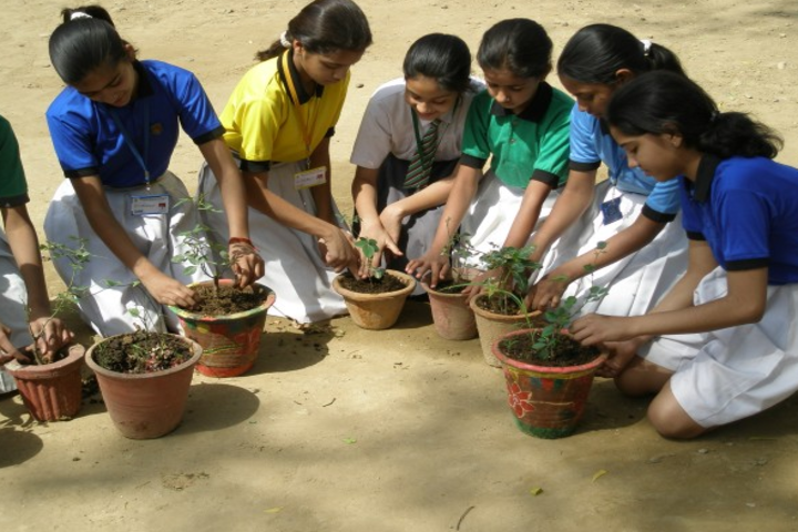 Hillview Adventist School-Environment Day